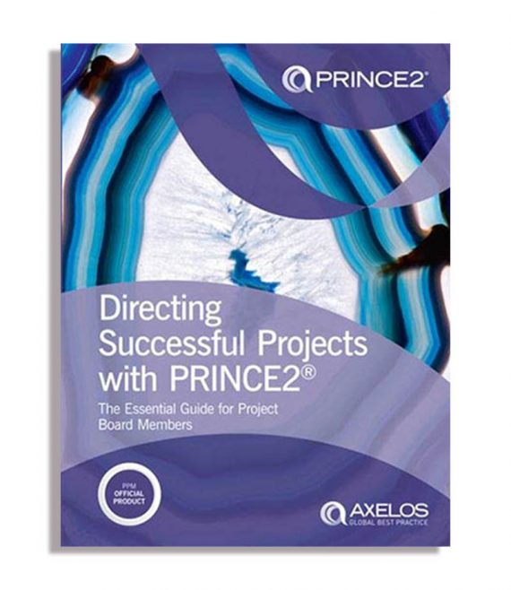 Directing-Successful-Projects-1-1.jpg